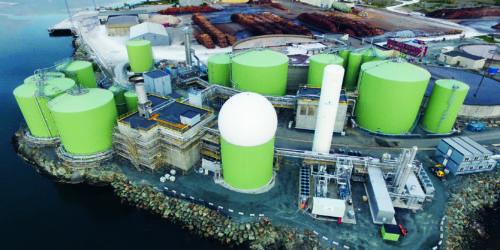 DOBLER: Med dypvannskai og Norske Skog som nabo har Biokraft en strategisk plassering på Fiborgtangen på Skogn. Her får selskapet biprodukter fra industrien og båttransportert råstoff fra oppdrettsnæringen. Foto: Biokraft.