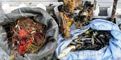 Forslaget innebærer at alle havner får plikt til å ta imot sorterte fraksjoner og avfall som er tatt opp av fiskeflåten.