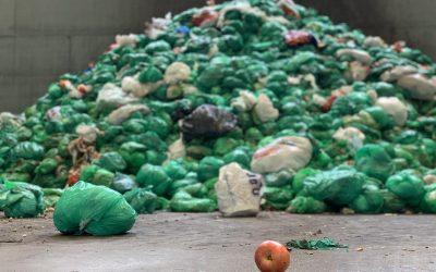 Halden kommune har basert seg på at matavfallet legges i grønne poser i restavfallsbeholderen for så å bli sortert ut i ettersorteringsanlegg. Når ØAS nå ikke vil ha matavfall inn i anlegget mener kommunedirektøren dette er i strid med selskapsavtalen.
